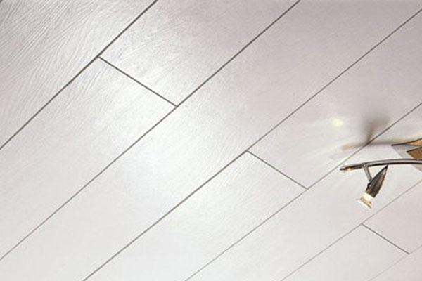 Виды потолочных панелей (фото-2)