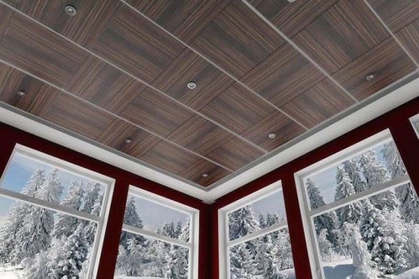 Виды потолочных панелей (фото-4)